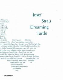 Josef Strau, Dreaming Turtle