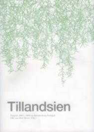 Tillandsien