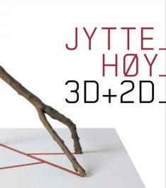3D + 2D