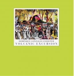 Dominique Gonzalez-Foerster. Volcanic Excursion. A Vision